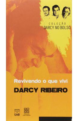 Revivendo-o-que-vivi---Colecao-Darcy-no-bolso-Vol.04