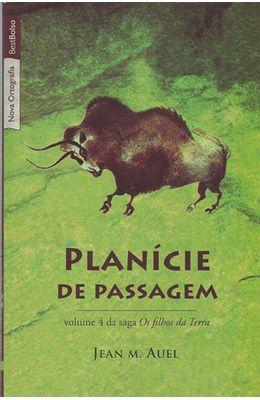PLANICIE-DE-PASSAGEM---BOLSO