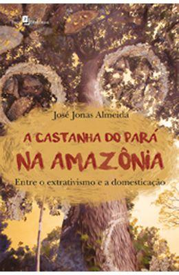Castanha-do-Para-na-Amazonia-A